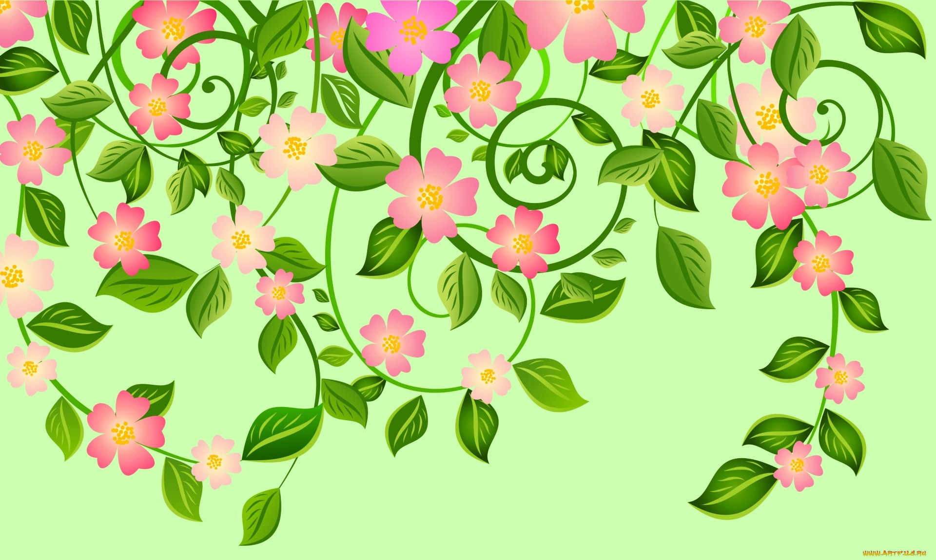 бедра картинка цветочный фон на прозрачном фоне кнопками